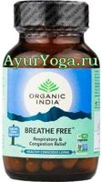 Бридх Фри капсулы (Organic India Breathe Free caps)