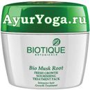 "Аппликация для волос ""Корень мускуса"" (Biotique Bio Musk Root Hair Nourishing Treatment Pack)"